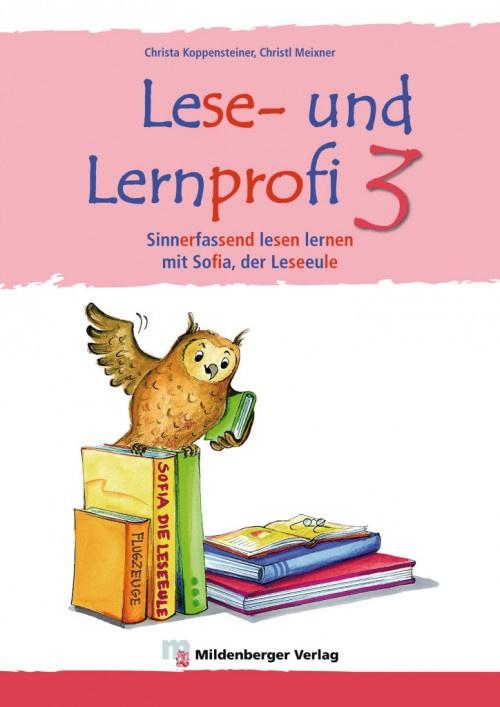 Lese- en Lernprofi 3 – Schülerarbeitsheft – silbierte Ausgabe Leseheft