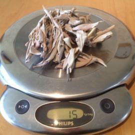 Witte Salie (zakje van 15 gram)