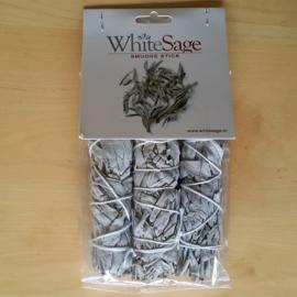 Mini smudge Witte Salie (x3)