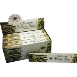 White Sage Wierook - Green Tree