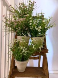 gras met witte bloemen