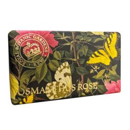 zeep osmanthus roos