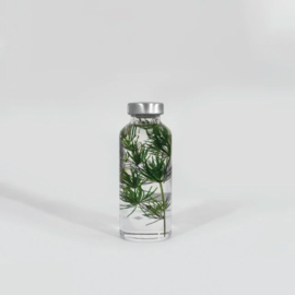 Slow Farmacy 'Plant in een fles' - Myriophyllum