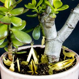 Botanopia Kampeerplaats voor planten