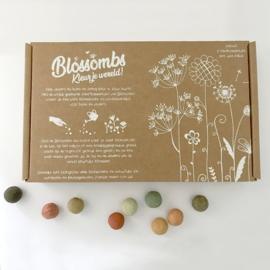Blossombs Geschenkdoos groot (met 9 zaadbommetjes & jute zakje)