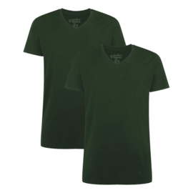 2-pack T-shirts V-neck