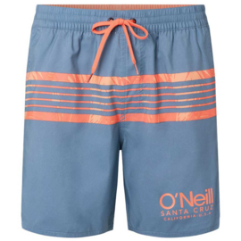 PM Cali Stripe Shorts