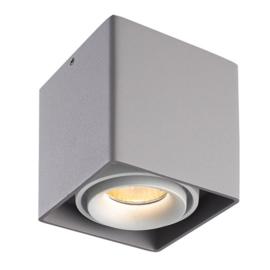 LED Plafondspot Esto