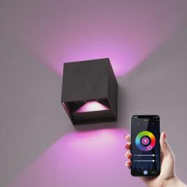 Smart WiFi+BLE LED Wandlamp Kansas zwart IP65
