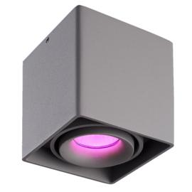 Smart WiFi LED opbouw plafondspot 'Esto' RGBWW kantelbaar