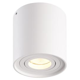 LED Plafondspot Ray