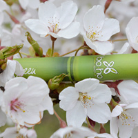 Mascara Volume Zwart -  Boho green make-up