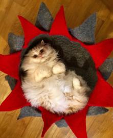 Workshop:  kattenmand