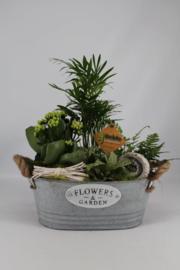 Plantenbakje zink ovaal