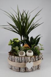 Plantenbakje rond schors wit