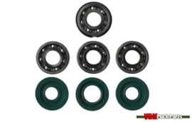Revision kit 4 bearings (Old model)