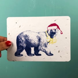 Winter bear - set of 4 post cards with envelopes