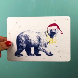 Winter bear - set van 4 kaarten met enveloppen