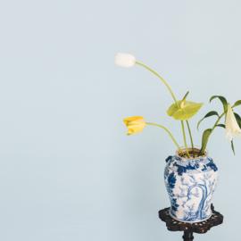 Flower Constellations Mix & Match 6 pieces
