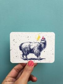 Furry friend notecards - set van 8 kaarten met enveloppen