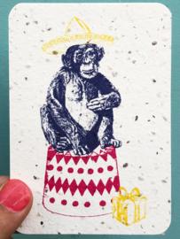 Happy Chimp notecards - set van 8 kaarten met enveloppen