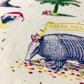 Holiday Armadillo - set van 4 kaarten met enveloppen