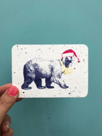 Winter bear notecards - set of 8 cards with envelopes