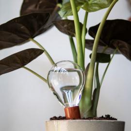 Waterworks sets | Happy Plants