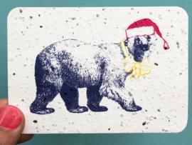 Winter bear notecards - set van 8 kaarten met enveloppen