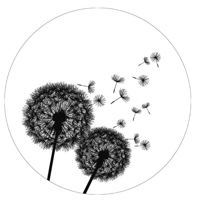 Wandcirkel blaasbloem