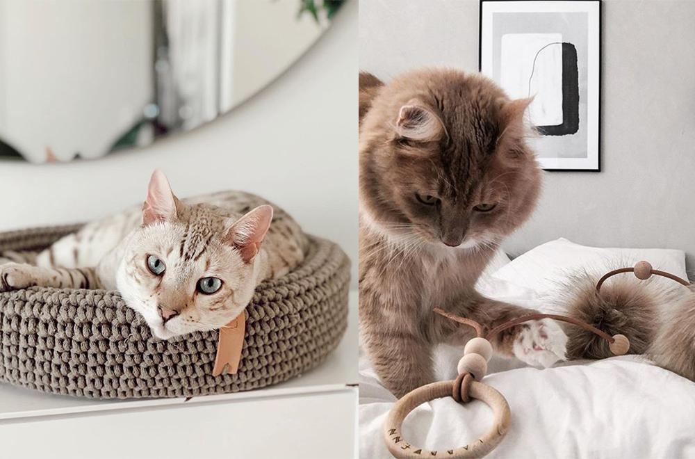 labbvenn kattenmand speelgoed