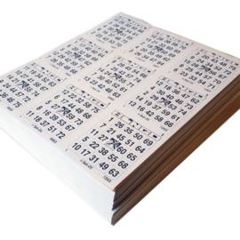 100 maxi boekjen 8 ronden triple