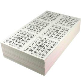 100 maxi boekjen 8 ronden dubbel