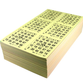 100 maxi boekjen 10 ronden dubbel