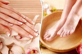 Workshop Spa Manicure of Pedicure