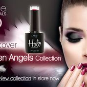 Halo Fallen Angels Collection