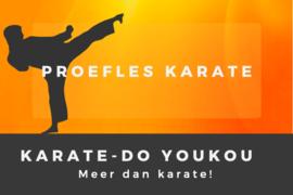 Cadeaubon karate