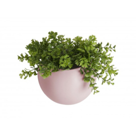 Wall plant pot - Globe - matt pink