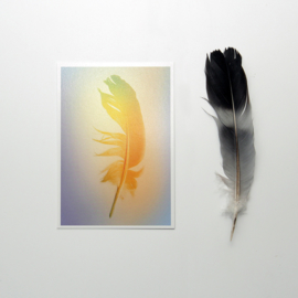 Ansichtkaarten 'Gradient Feather' (set van vijf)