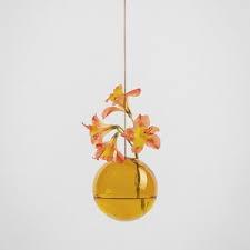 Plant Bubble Hang
