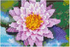 Waterlelie - Dienblad klein