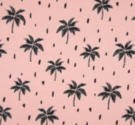 Palmtree pink