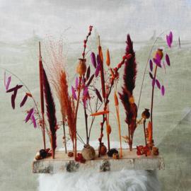 Droogbloemen houtje Sandersonia