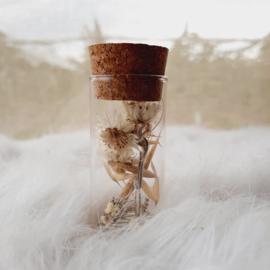 Buisje klein wit gipskruid