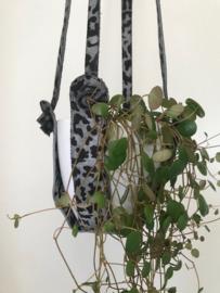 Panter planten hanger
