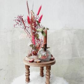Set Helichrysum
