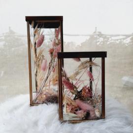 Glazen box set Roos