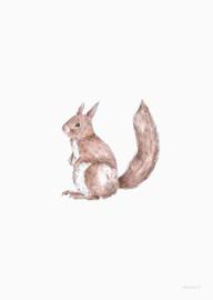 Inkylines Kaart - Eekhoorn