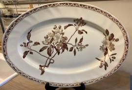 Schaal / vleesschaal - Creil et Montereau Terre de Fer - décor in bruin van APPELBLOESEM / FLEURS DE POMMIER brun