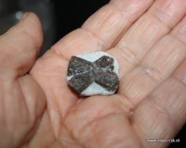 Chiastoliet - kruissteen ruw